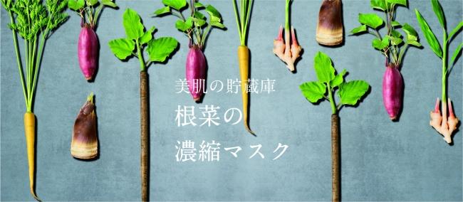 根菜の力で美肌を手に入れる!「根菜の濃縮マスク」発売