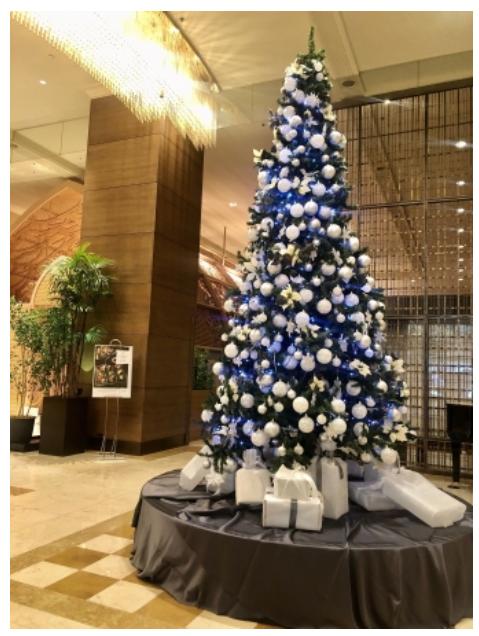 広島市のホテルがクリスマスイルミネーションを点灯